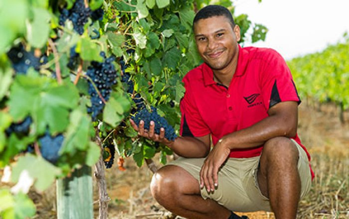 First Cape Winemakers Guild Viticulture Protégé Kick Starts His Career