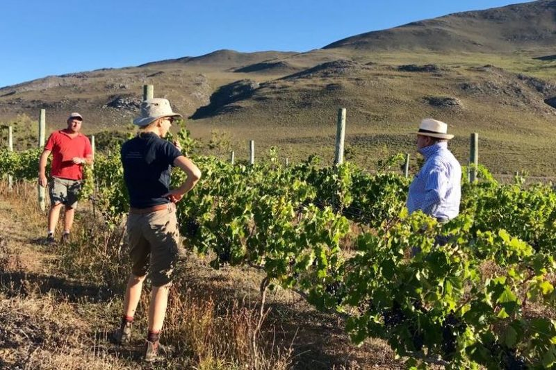 André, our farm manager and Marlize in serious discussion with Bruce about the ripeness of the grapes in the Shiraz Vineyard