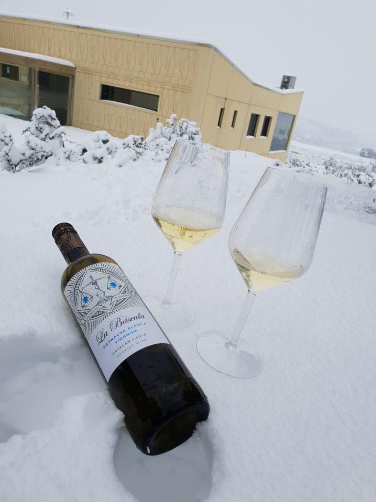 bascula-snow